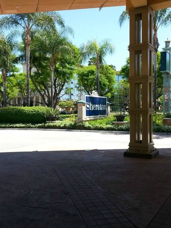 Sheraton Park Hotel at the Anaheim Resort: View out the front of the Sheraton