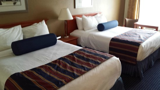 Best Western Plaza Inn: NEW BEDDING THEME