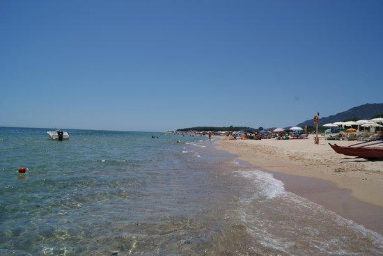 Hotel Flamingo : Пляж