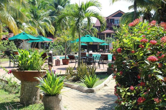 Holiday Villa Beach Resort & Spa Cherating : The natural surroundings at Holiday Villa Cherating