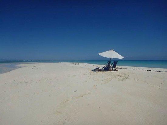 Royal Davui Island Resort: Sand Spit Picnic