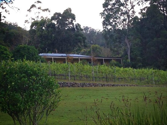 Wallaby Ridge Retreat : The accomodation
