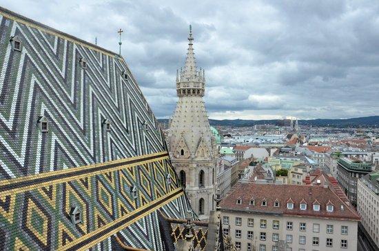 Historisches Zentrum von Wien: Veduta in cima a Santo Stefano