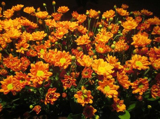 Grand Hyatt Seoul: fresh flowers at reception