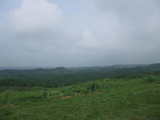 Kuju Kogen Cottage : 景色が・・・
