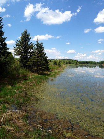 Kerry Wood Nature Centre: Scenery