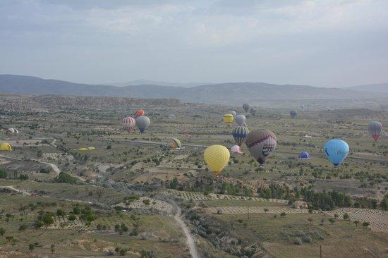 Butterfly Balloons: der Flug hätte gern noch länger dauern dürfen...
