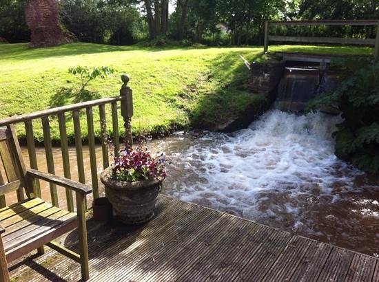 Gurney Manor Mill : garden
