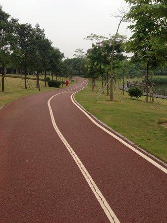 Shenzhen Central Park: Exclusive track to running
