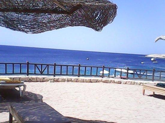 Hilton Sharks Bay Resort: вид на самое красивое море