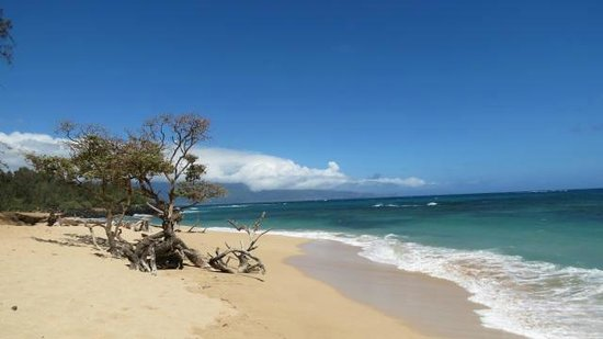 Deserted beach near Paia inn