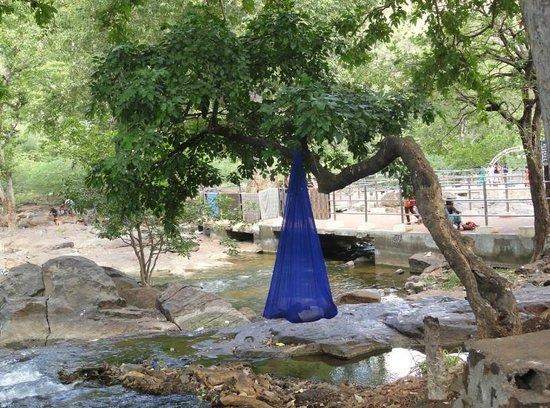 Hogenakkal Falls: Thrilling sleep for this kid