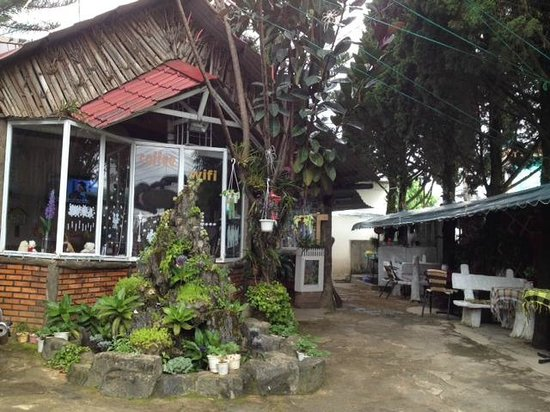 Family Strawberry coffee: Family cafe in Dalat with both outside and inside spaces