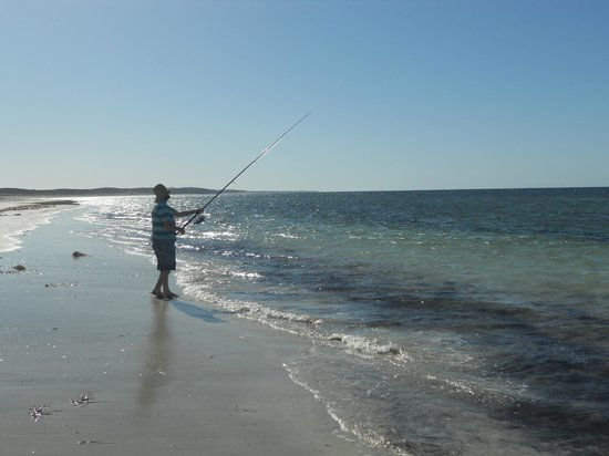 Pickering Cottages: Husband fishing in Wool Bay