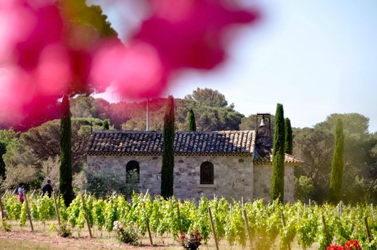 La Bastide du Clos des Roses : provençal