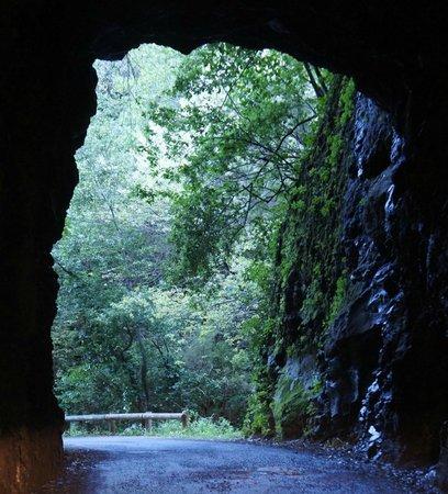 Parque Nacional de la Caldera de Taburiente: northern slope