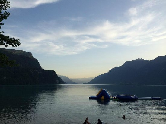 Camping Aaregg: Sicht vom Campingplatz uaf Brienzer See