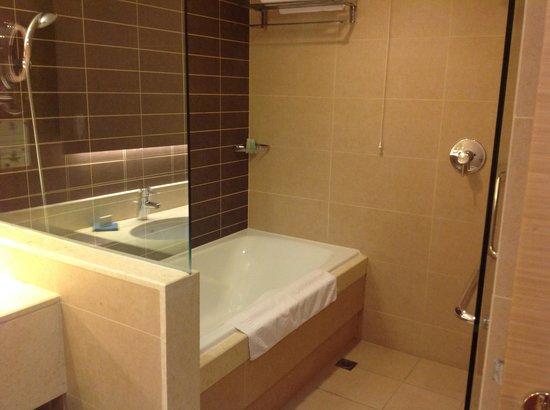 Azadi Grand Hotel: Die Dusche/Badewanne