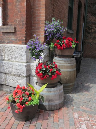 Distillery Historic District: Colourful flower tubs
