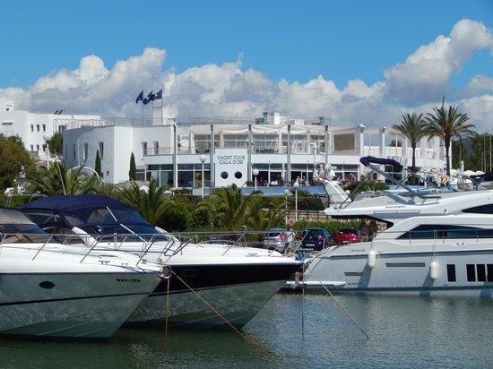 Yacht Club Cala d'Or : The Yacht Club