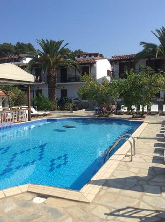 Villa Rosa Apartments: lovely pool and comfy sunbeds.