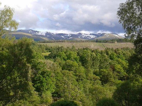Corrieview Lodges: View from Corrieview Lodge, Spean Bridge