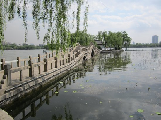 Daming Lake : Lac Jinan