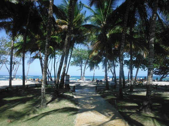 Iberostar Costa Dorada : Beautiful beach
