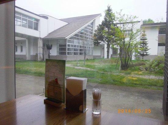 Sawauchi Gingakogen Hotel: レストランからの眺め
