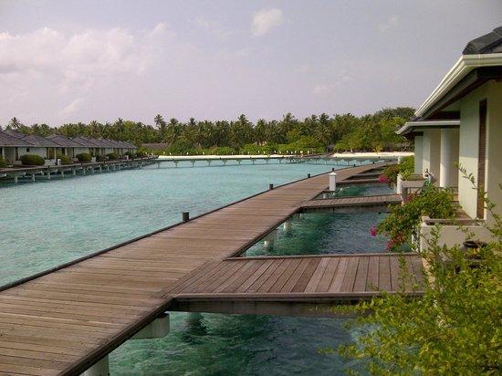 Sun Island Resort : passerelle chambres