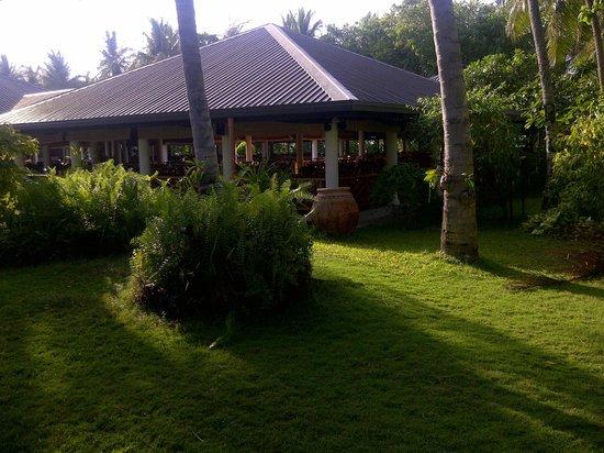 Sun Island Resort : jardin