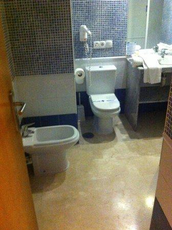 Hotel & Spa Benalmadena Palace : Bathroom