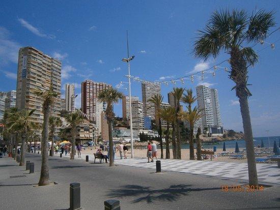 MedPlaya Hotel Rio Park: View of Benidorm.
