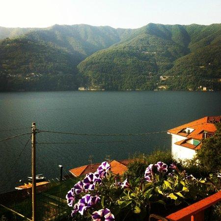 Villa Albonico : dalla camera