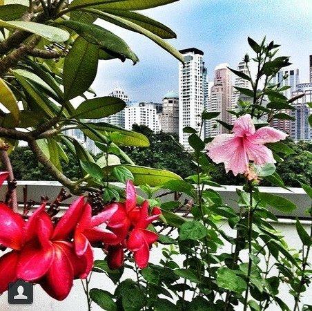 Le Meridien Bangkok : Вид на город с отрытой веранды, где находится бассейн