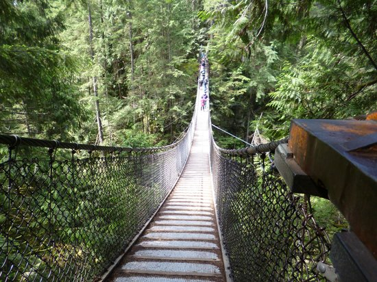 Lynn Canyon Suspension Bridge: The Bridge