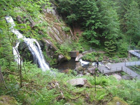 Triberger Waterfall: wf