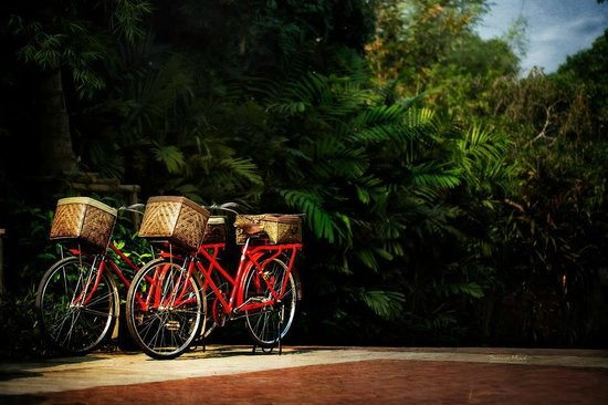 Marndadee Heritage River Village: Red bikes