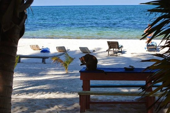 Xamach Dos : Beach area