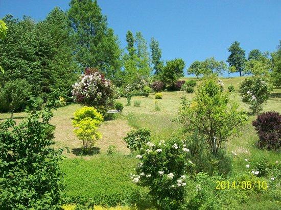 Haus Loidl: Hanggarten