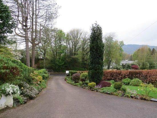 Lingwood Lodge: The driveway