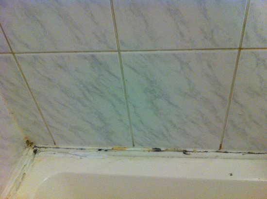 Victoria Station Hotel : Mildew mold in caulking around shower