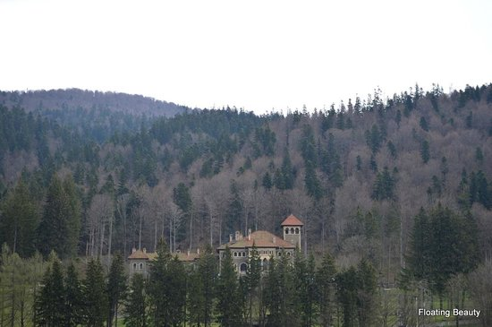 Cantacuzino Castle: Castle from far