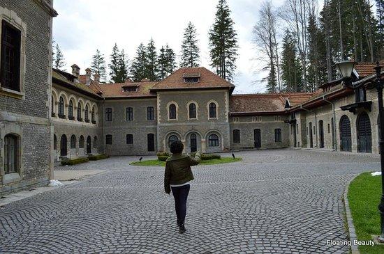 Cantacuzino Castle: Castle