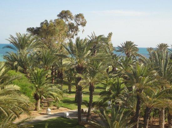 Club Med Djerba la Douce: Vue du balcon à Calypso