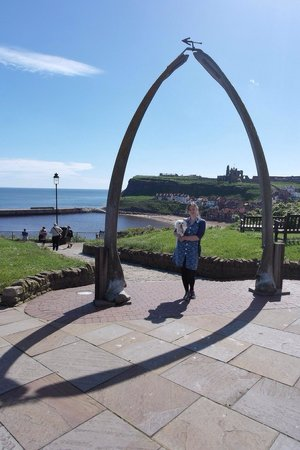 Whitby Beach: Whale arch at north cliff