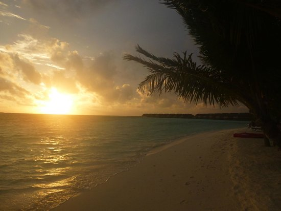 Vilamendhoo Island Resort & Spa: Beautiful Sunsets