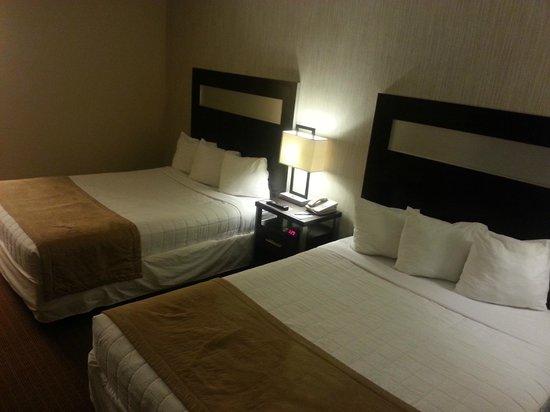 Universal Palms Hotel: CAMAS