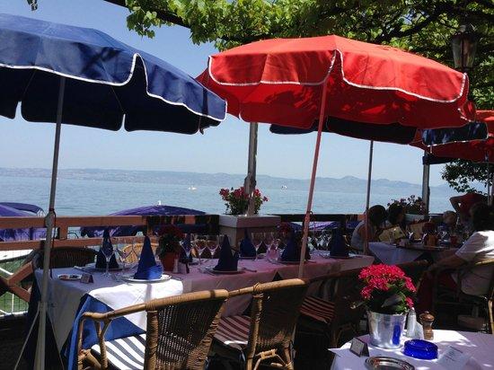 Hôtel Les Cygnes  : La terrasse du restaurant
