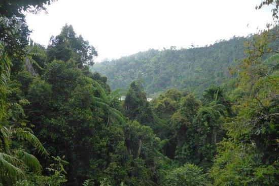 Bunga Raya Island Resort & Spa: View from Nature Walk